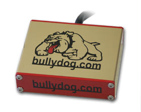 Bully Dog Snooper Dog