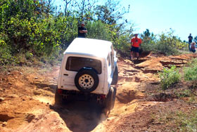 TX4x4 Fall Run