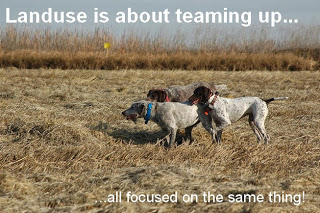 a2.bp.blogspot.com__fZXt0mKBpCw_UpJy3fmfWSI_AAAAAAAAEZg__CEkFtxzFQ4_s320_dogs_teamwork_text_web.jpg