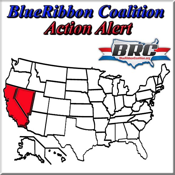 brc-logo-action-alert-front_0.jpg