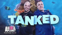 Brett-Raymer-and-Wayde-King-TANKED-title.jpg