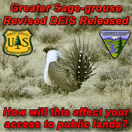 FB-fs-blm-NV-CA-Bi-state-sage-grouse.jpg