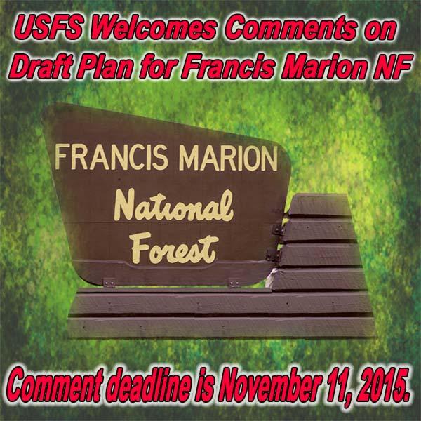 FB-SC-FMNF-Forest-plan-08.20.15.jpg