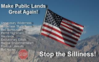 stop_silliness_flag1.jpg